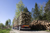 Truck with timber — Stock Photo