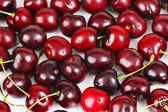 Cherry background — Stock fotografie