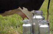 三金属罐 — 图库照片