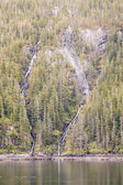 Twin Waterfalls in Fir Trees — Stockfoto