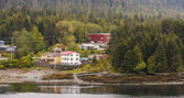 Buildings in Evergreens on Alaskan Waterway — Stok fotoğraf