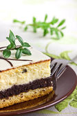 Delicious sweet cheesecake with poppy seed — Stock Photo