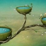 drie kommen van water op de boom — Stockfoto
