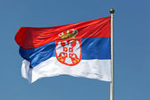 Serbian flag — Stock Photo