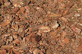 Wood bark chips — Stock Photo