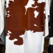 Foto de Stock  : Cow hide
