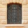 Ironwork — Stock Photo #11463621