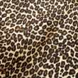 Leopard hyde — Stock Photo