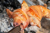 Pig on spit — Stock Photo