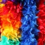 Rainbow feather — Stock Photo