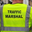 Stock Photo: Traffic Mashal