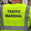 Traffic Mashal — Stock Photo