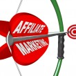 Affiliate Marketing Bow and Arrow Aimed at Target — Stock Photo #10918431