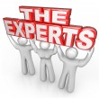 The Experts Professional Help Solve Problem - Stock Photo