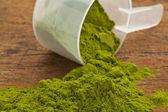 Wheatgrass powder supplement — Stock Photo