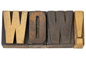Wow - exclamation in wood type — Stock Photo