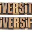 Diversity and diversify words in wood type — Stock Photo