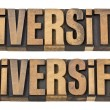 Diversity and diversify words in wood type — Stock Photo #10868010