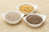 Chia and flax seed — Stock Photo