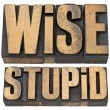 Wise and stupid in letterpress wood type — Stock Photo