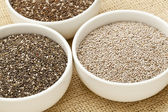 Chia seed variety — Stock Photo