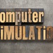 Computer simulation — Stock Photo