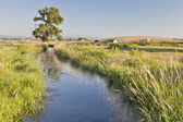 Irrigation ditch in Colorado — Stock Photo