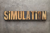 Simulation word in wood type — Stock Photo