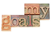 My goals text in wood type — Stock Photo