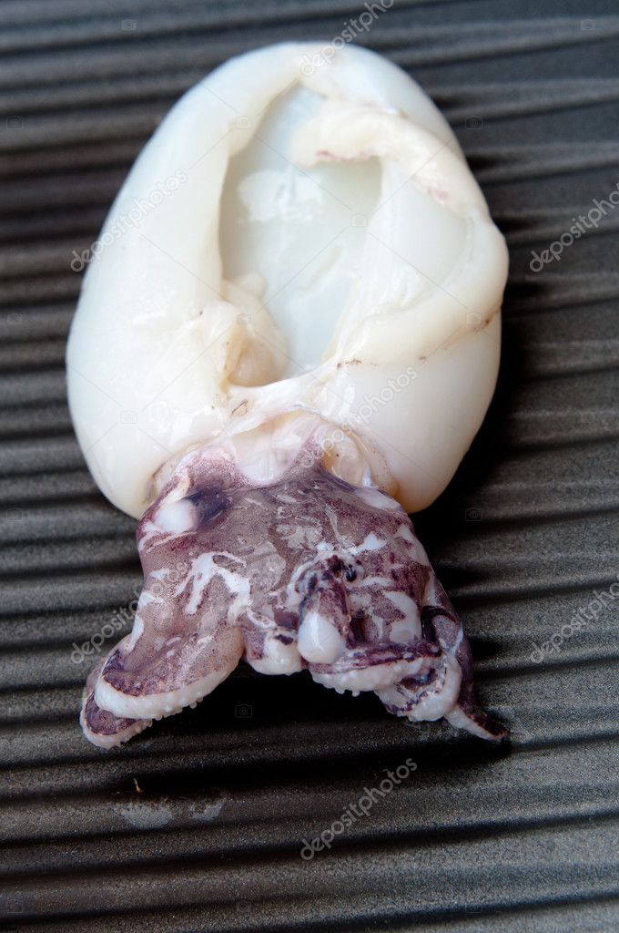 Fresh Calamari tube being grilled on BBQ  Stock Photo #11047502