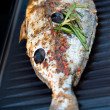 Stock Photo: Gilthead Seabream on BBQ