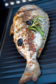 Gilthead Seabream on BBQ — Stock Photo
