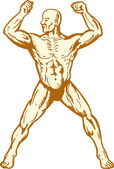 Male human anatomy body builder flexing muscle — Cтоковый вектор