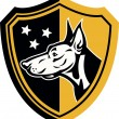 Doberman Guard Dog Stars Shield - Stok Vektör