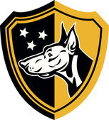 Doberman Guard Dog Stars Shield — Stok Vektör