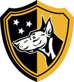 Doberman vakt hund stjärnor sköld — Stockvektor