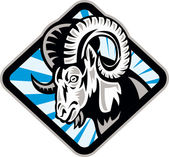 Bighorn Ram Sheep Goat — Stock Vector