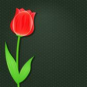 Schwarze einladungskarte mit rote tulpe — Stockvektor