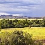 Kakadu National Park — Stock Photo #10782468
