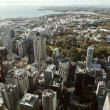 Auckland City From The Skytower — Stock Photo #11599395