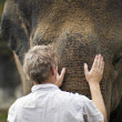 Elephant Love — Stock Photo