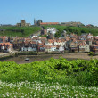 Whitby view - Stock Photo