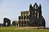 Ruinas de la abadía de whitby — Foto de Stock