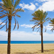 Vacation on Costa del Sol — Stock Photo #11413674
