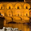 Mezquita Facade at Night - Stock Photo