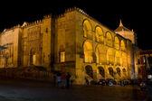 Mezquita på natten i cordoba — Stockfoto