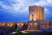 Calahorra Tower and Roman Bridge in Cordoba — Stock Photo