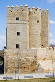 Calahorra Tower in Cordoba — 图库照片