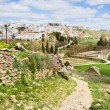 Stock Photo: AndalusiCountryside in Spain