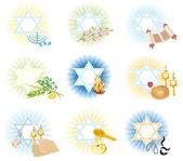 Set is 9 symbols icons of the Jewish holidays — Stock Photo